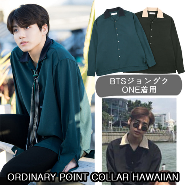 [ORDINARY PEOPLE]ORDINARY POINT COLLAR HAWAIIAN_BTS AB6IX